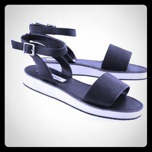 Steve Madden Felicia black sandal.